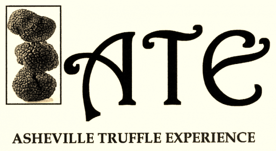 ATE_image